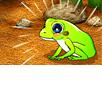 아기개구리 포리
